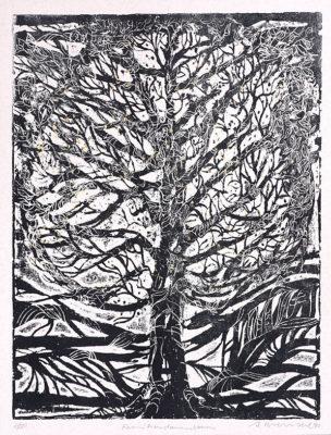 brendel albrecht 269 94 familienstammbaum