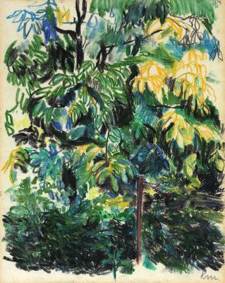 mentzel kathrin 289 95 nussbaum hinter der buchenhecke