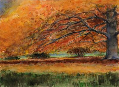 pietsch manfred 390 03 herbstbaum